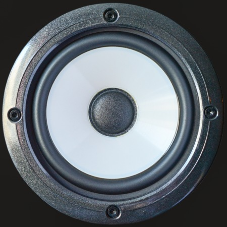 Bass professional loudspeaker with screws, close up isolated on black background.