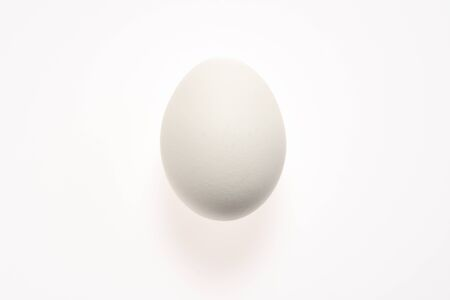 White egg on a white background with shadow