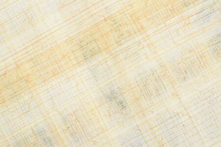 Authentic Egyptian papyrus paper, diagonal background and texture 45. Close-up high resolution.