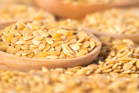 linum: golden flax seed or linseed