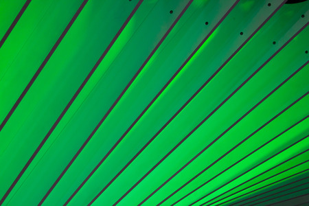 Background is a green sheet. Archivio Fotografico - 105399633