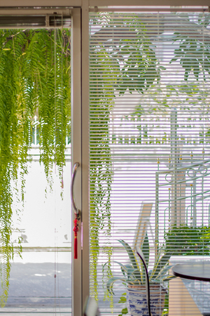Glass door and White Venetian curtain or shutter, shade, Louvers background. Archivio Fotografico