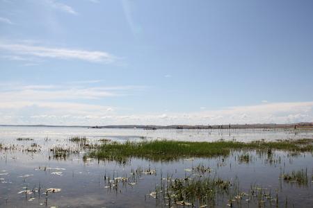 inner mongolia: Genhe wetland, Inner Mongolia