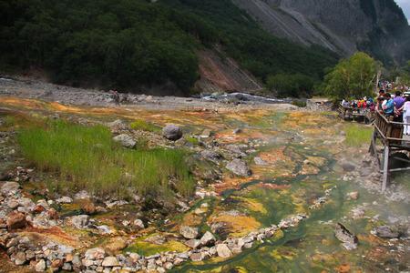 calcification: Changbai mountain hot springs CA fossils