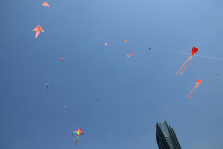 Kites flying in the clear blue sky