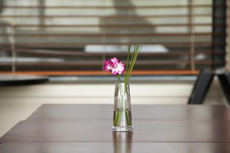 Flower stick in a vase Stock fotó