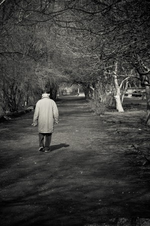 Old man goes alone through the park. Black and white photo