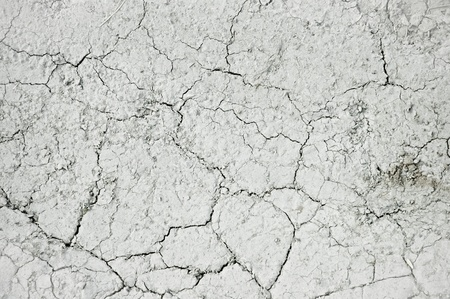 Abstract natural background: gray surface of the earth  photo