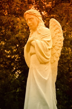 angel cemetery: Statue of a crying angel in sunset rays Stock Photo