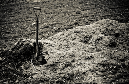 manure: The old shovel sticks up in pile of earth  Sepia toned