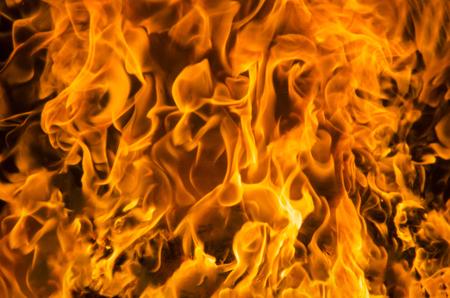 Orange flame of fire inside fireplace behind glass. Reklamní fotografie