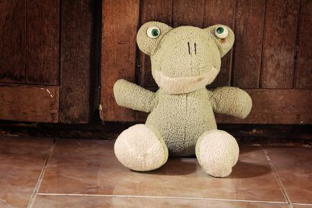 kiddish: Retro cloth dolls frog Stock Photo