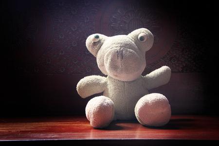 kiddish: Retro cloth dolls frog, in sunlight Stock Photo