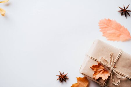 Autumn creative holiday present. Handmade paper gift box with foliage dried leaves, pine cones and nuts on white. Thanksgiving day, fall bacground. Copy space
