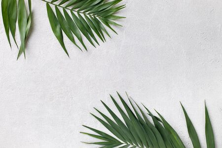Summer vibes. Vacation, paradise, ocean shore resort, tropical beach travel concept, sea coast. Palm tree leaves on grey stone background. Summertime creative layout, copy space