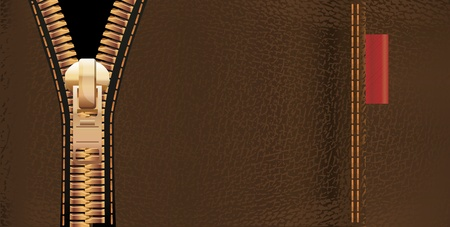 Leather texture and zipper Vector