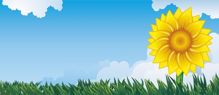 Summer background with sunflower and grass.