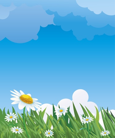 tranquil scene on urban scene: Summer background with daises.
