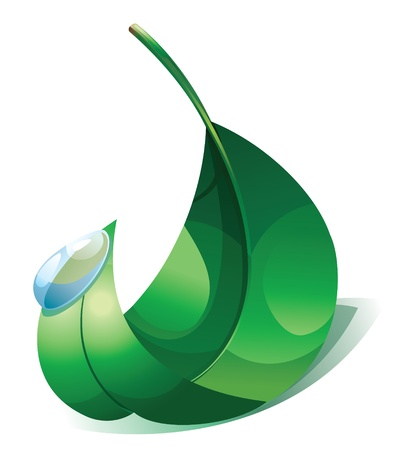 illustration of green leaf and water drop.