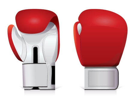 combative: Pair of shiny, red and white boxing gloves.