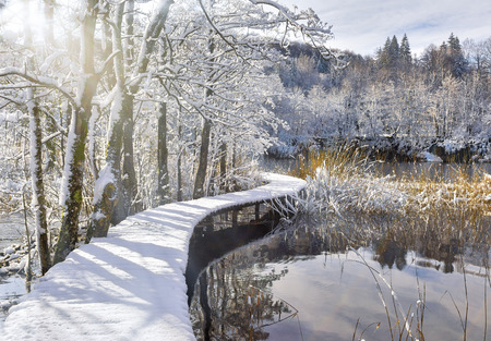 Snow-covered boardwalk over unfrozen lake with beautiful reflections in it against snowy winter forest.