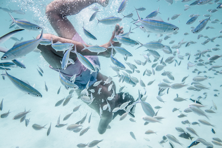 Man is snorkeling with fishes in wonderful oceans water Stock Photo