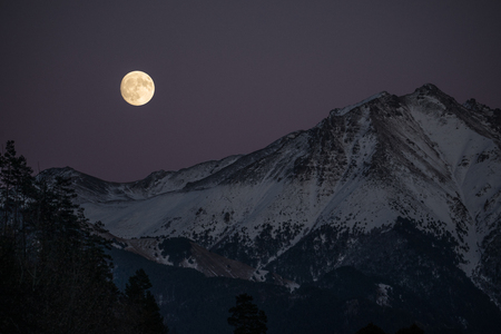 Winter forest and snow mountains under the light of the full super moon, Caucasus, Russia
