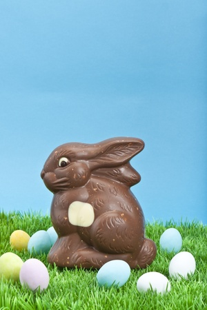 Easter bunny photo