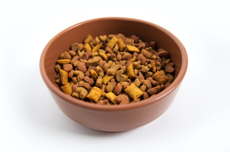 Bowl of food for pets
