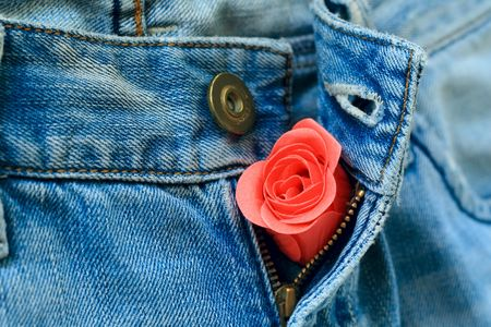 A rose bud in unzipped jeans Stock Photo - 4384491