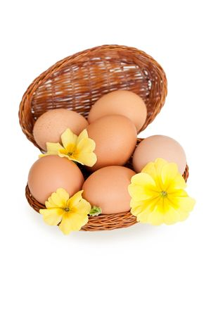 Eggs in a basket with yellow spring flowers, isolated over white Stock Photo - 4521536