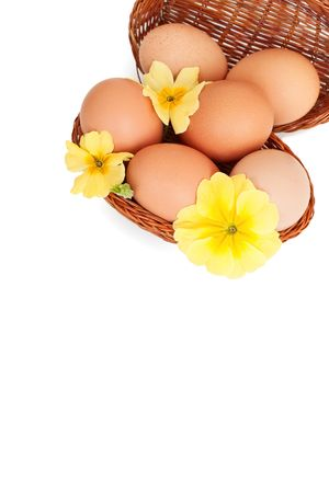 Easter eggs in baskets, isolated, with empty space for text Stock Photo - 4521537