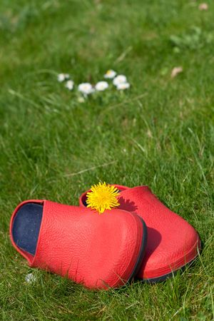 Summer happiness (A pair of red rubber slippers on grass) photo