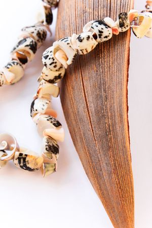 Necklace made of seashells set on a dried coco leaf Stock Photo - 5370450