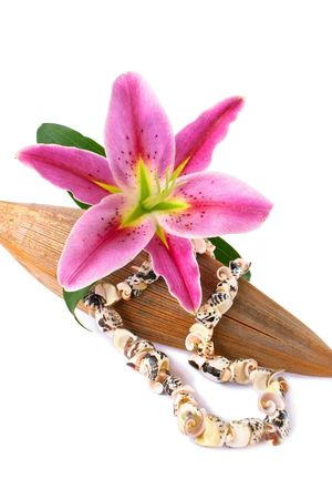 jewellry: Seashell necklace and lily flower set with a dried coco leaf, isolated over white