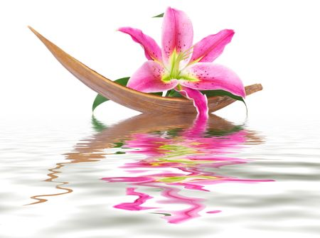 Lily flower set on a coco leaf floating in the water photo