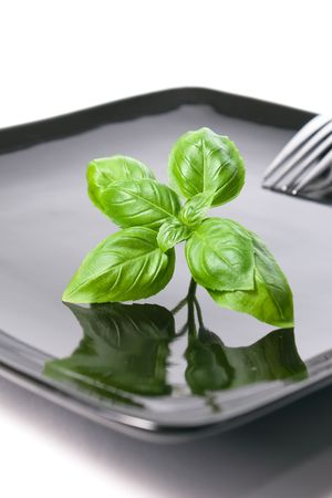 Summer diet: fresh basil leaves on a black plate, with a fork on the background photo