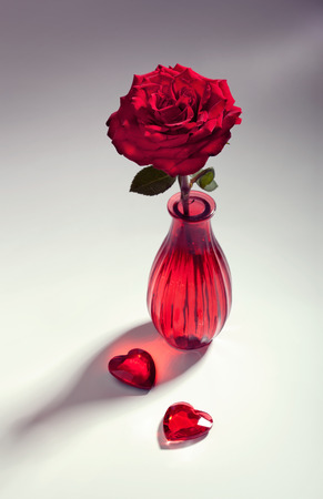 Red rose with two hearts, love concept, toned image photo