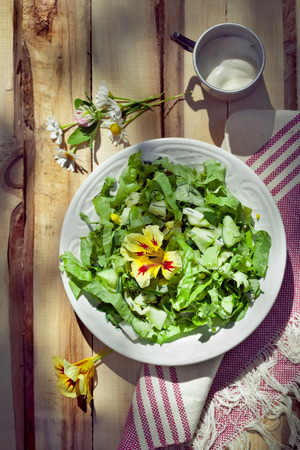outdoor lighting: Cucumber salad with leccuce and boiled eggs, country style photo, natural outdoor lighting
