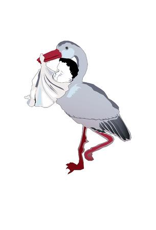 stork delivering baby Vector