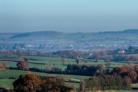 arboles frondosos: Countryside Landscape View en Reino Unido.