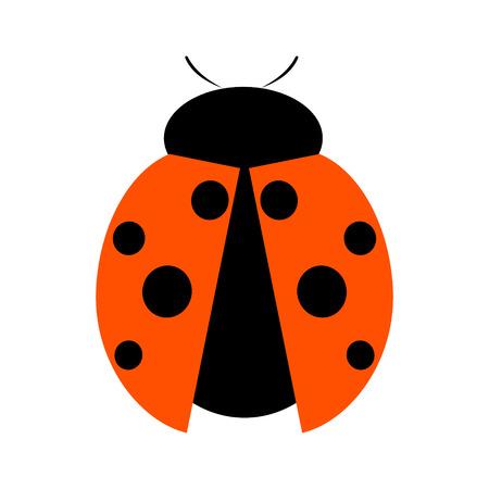 catarina caricatura: Ilustración del vector. Icono de la mariquita, aislado sobre fondo blanco