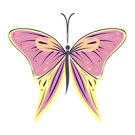 butterfly isolated: illustration of insect, colorful butterfly, isolated on the white background Illustration