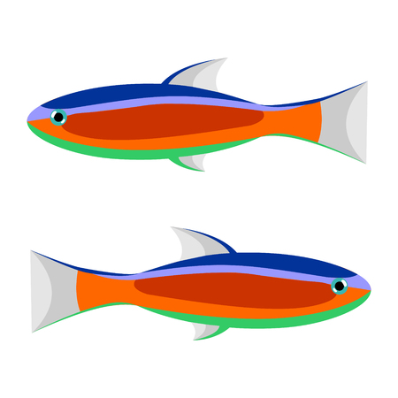 neon fish: Vector illustration of colorful striped fish, isolated on the white background