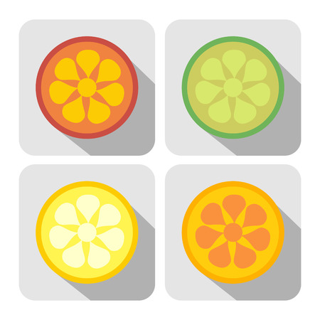 lemon lime: Vector fruits icon. Set of colorful icons of lemon, lime, orange and grapefruit, isolated on the white background