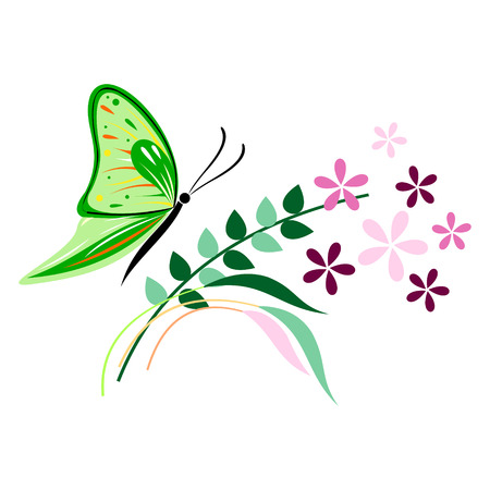butterfly isolated: Vector illustration of insect, green butterfly, flowers and branches with leaves, isolated on the white background