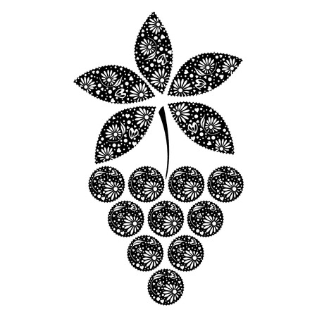 black grape: Vector illustration of ftuit. Decotarive ornamental black grape isolated on the white backdrop.
