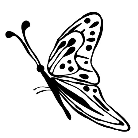 linework: Vector illustration of insect. Cute hand drawn black butterfly isolated on the white background. Inc painting. Series of Animals and Insect Illustration.