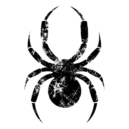 Vector illustration of spider, isolated on the white background. Black old sign with attrition and cracks. Series of Animals and Insect illustrations.