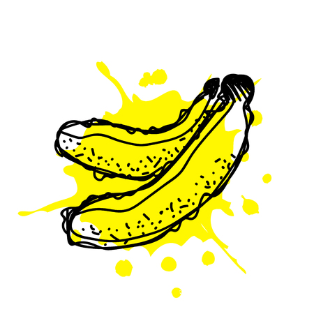 Vector hand drawn fruits illustration of banana with splash and drop, isolated on the white background. Line drawing, Series of Artistic, Ornamental vector Illustration. Illustration
